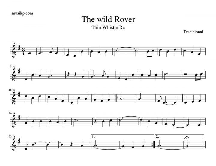 The wild Rover - Partitura para Tin Whistle en Re
