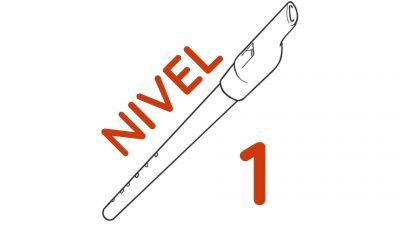 Guia practica de tin whistle en Re - Nivel 1